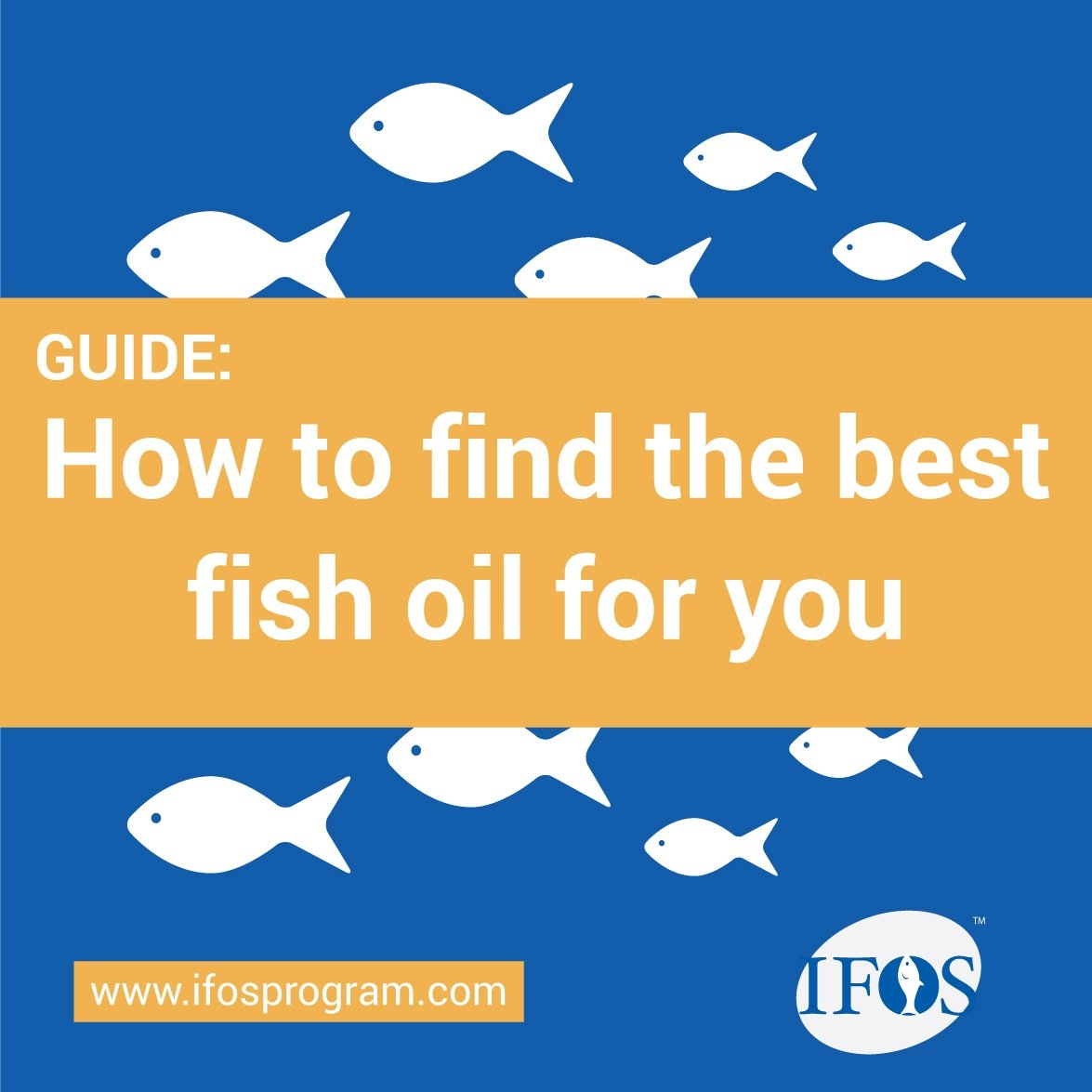 IFOS-CTA-How-to-find-best-fish-oil-for-you.jpg